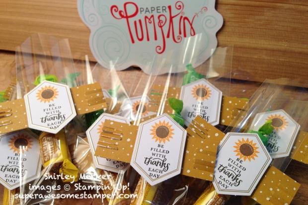 11 8 2017 sunflowerpf-001